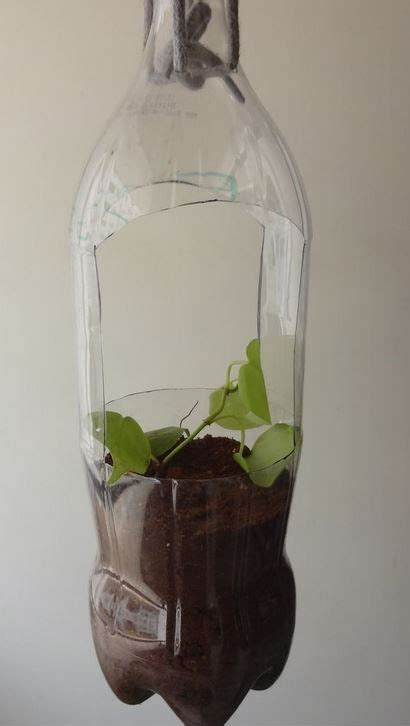 making  plastic soda bottle hanging planter thriftyfun