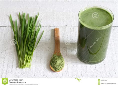 Barley Grass Detox by Barley With Fresh Grass Detox Diet Concept Stock