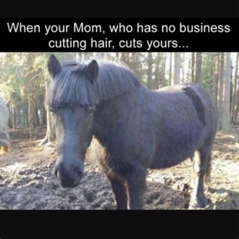 Really Hilarious Memes - really funny memes humor that will make you laugh 23