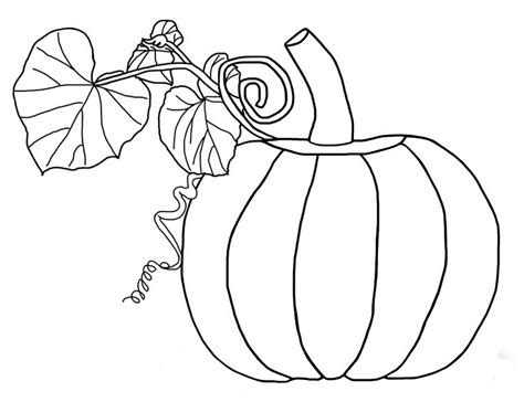 Pumpkin Leaves Coloring Pages the pumpkin and leaves coloring pages fall