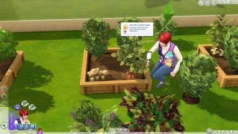 4 vegetables in the sims 4 gardening skill guide sims community