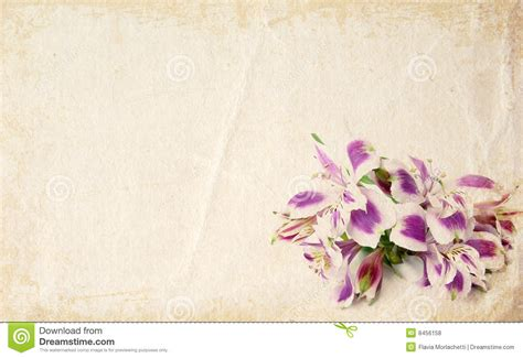 card flowers flower card royalty free stock photos image 8456158