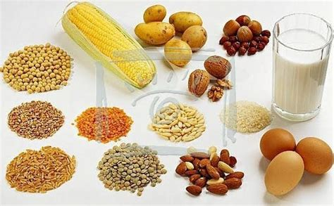 Proteina Nabati Makanan Yang Mengandung Protein Nabati