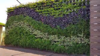 What Are Vertical Gardens Vertical Gardens India