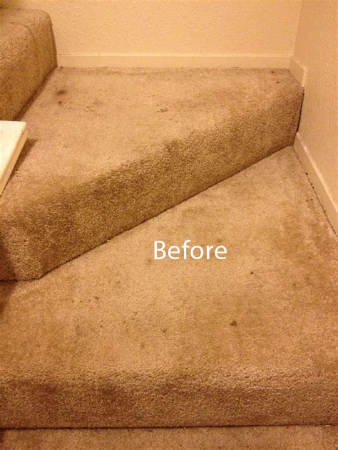 rug cleaning reviews best way carpet cleaning reviews carpet nrtradiant