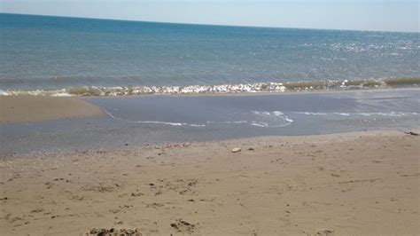lido il gabbiano ginosa marina spiaggia di ginosa marina qspiagge