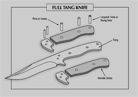 tang of a knife how to choose the best knife for survivopedia