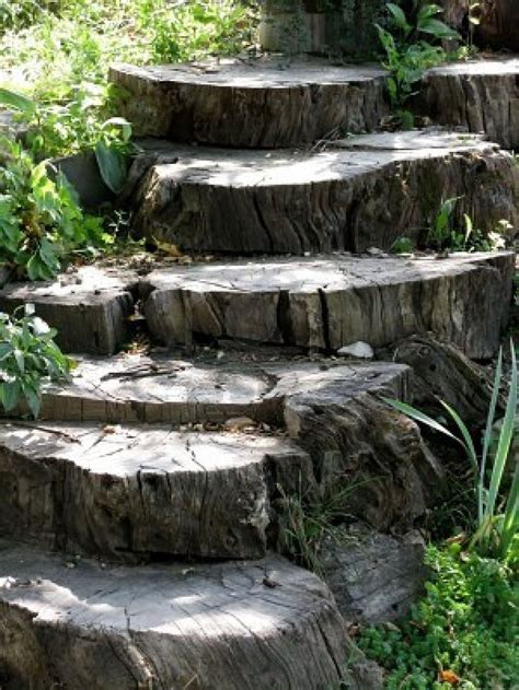 wood stump tree stump steps backyard ideas pinterest tree stump
