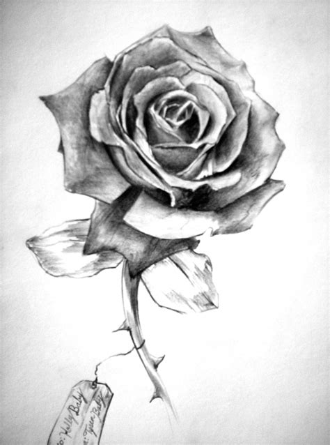 amazing grey rose flower tattoo design sample
