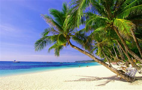tropical island hd wallpapers set 1 images artists