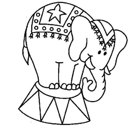 circus elephants coloring pages circus elephant page coloring pages