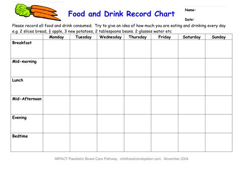 food record chart template free food and drink record chart templates at