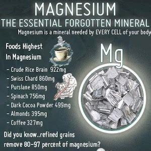better you magnesium review reasons why magnesium is essential for better health