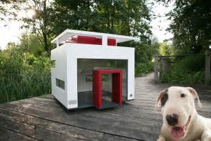 home with puppy 11 luxury houses worthy of mtv cribs barkpost