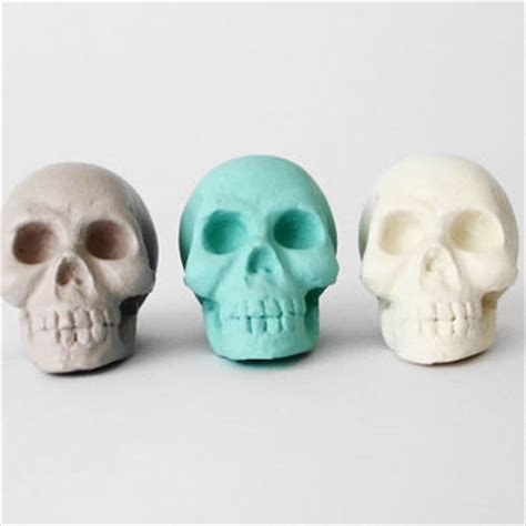 skull decorations for the home hodi home decor on wanelo