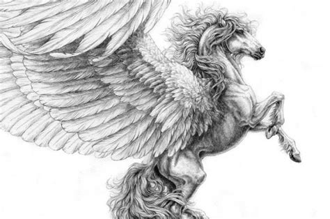 imagenes de animales mitologicos dibujos a l 225 piz de animales mitol 243 gicos fantas 237 a para tu