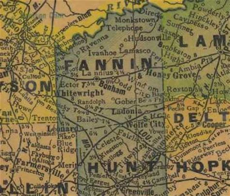 a pictorial history of fannin county books fannin county