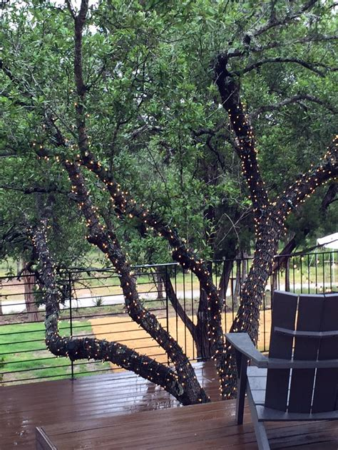 10 Ways To Amp Up Your Outdoor Space With String Lights Stringing Lights In Trees