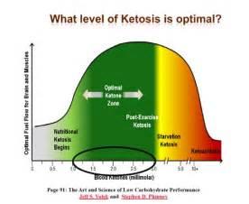 excerpt from hcg 2 0 understanding ketosis