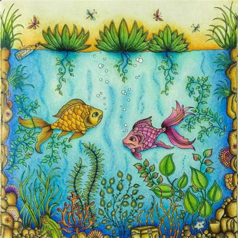 secret garden colouring book qbd 26 best images about fish secret garden peixe jardim