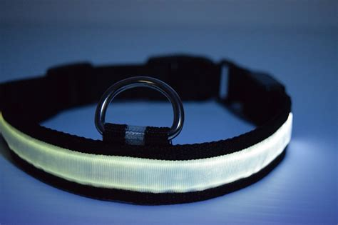 Led Collar led collar led glow in the collars