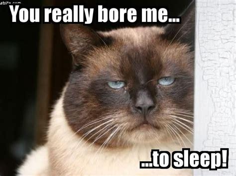 Boring Meme - sleep at night memes