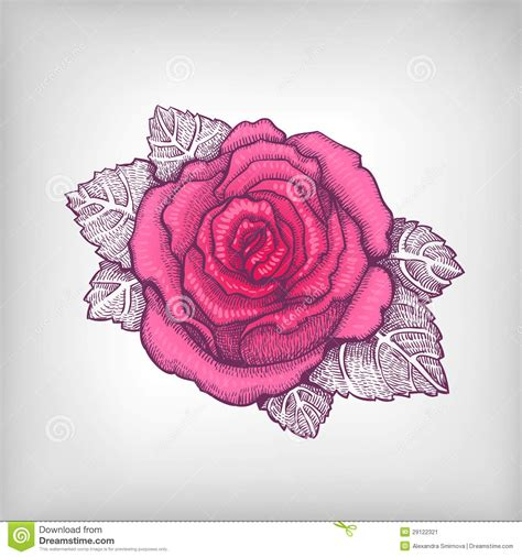 Pink Sketches by Easy Pencil Drawings Of Roses
