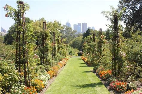Royal Botanic Garden Melbourne 10 Top Gardens In Greater Melbourne Melbourne