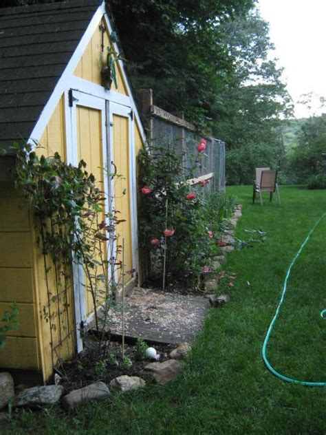 backyard chickens vancouver instant get backyard chicken coop vancouver