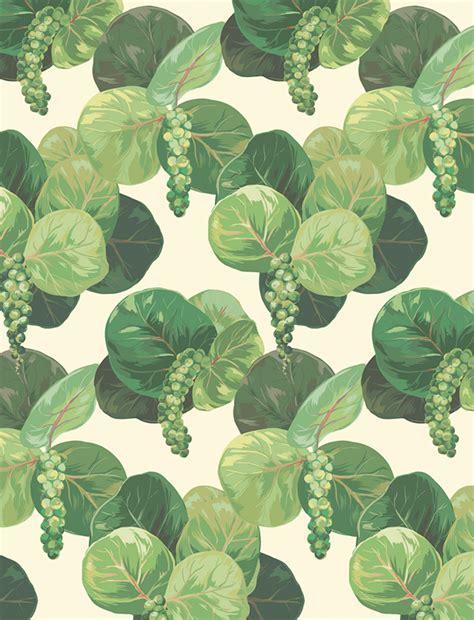 botanical pattern ai seagrape botanical illustration on student show