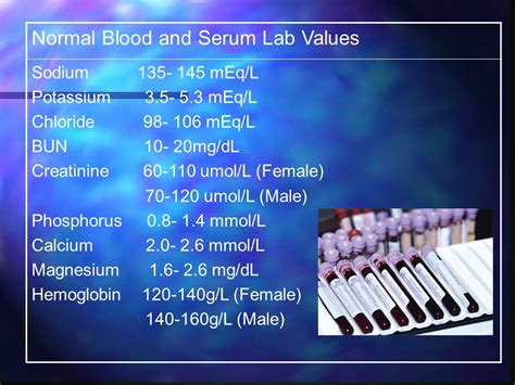 creatinine 70 umol l renal system scenario ppt