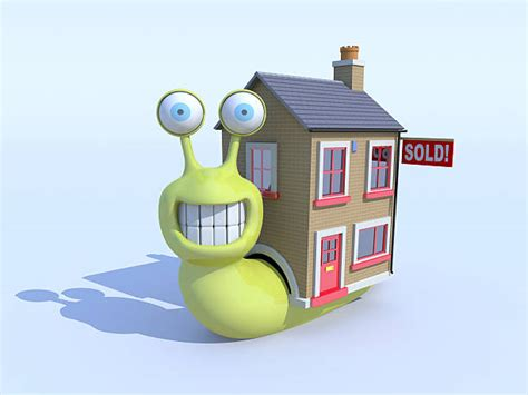 cartoon house stock  pictures royalty  images