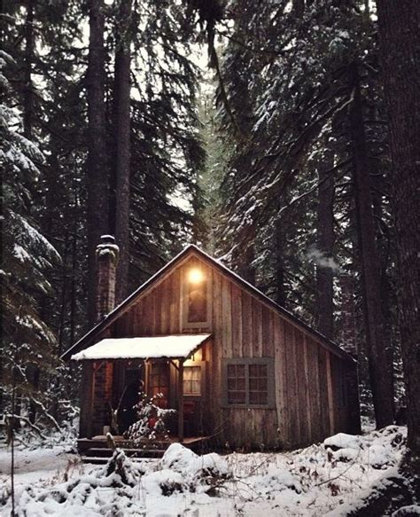 tiny cabin at black mountain 189 best images about cabin on outhouse bathroom decor black forest and