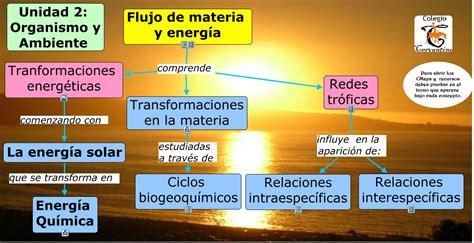 cadenas troficas y ciclos biogeoquimicos 2 0 flujo de materia y energ 205 a 2