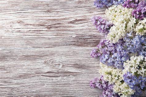 imagenes vintage lila lilas flores sobre fondo de madera rama de la flor en una
