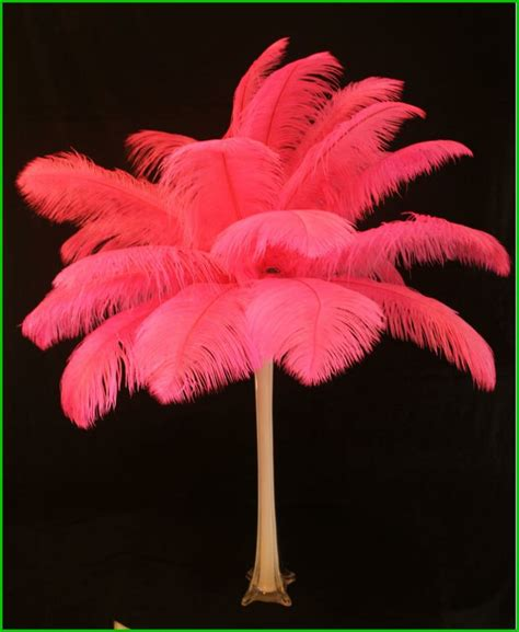 17677 Sweet Feather Top 90 best images about tatianna s sweet 16 ideas on