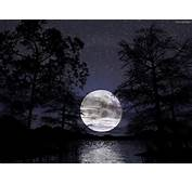 Full Moon Wallpapers  Beautiful Cool