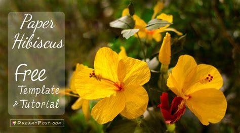 Hibiscus Flower Template