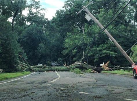 home insurance and fallen trees insurance claims fоr fallen trees what s covered insurance advice insurance