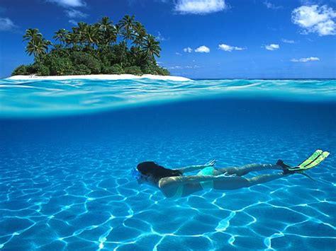 clearest water swim the clearest waters on earth marketmaps blog