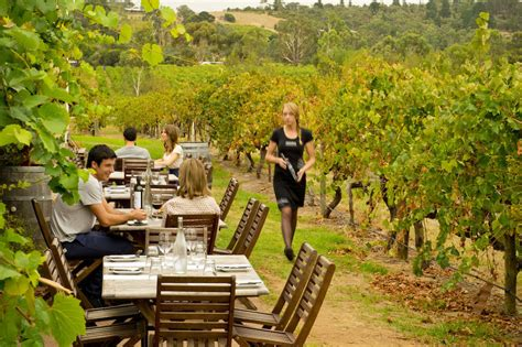 4 of my favourite things to do in mclaren vale eat play