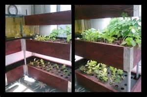 Diy Sunroom Kit Indoor Aquaponics Aqua Botanical