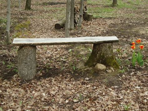 bench made out of tree trunk 7 diy tree stump creative ideas