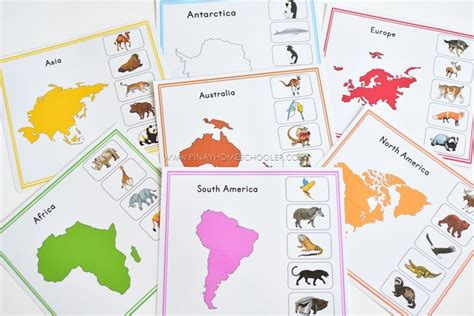 montessori printable continents montessori inspired animal continents activity sheets