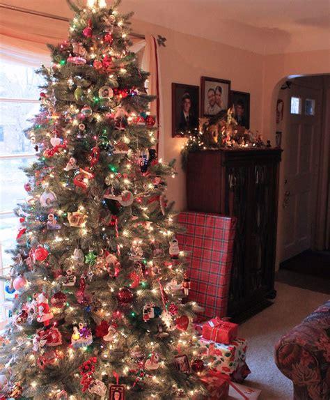 majestic spruce christmas tree majestic blue spruce tree tree classics