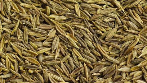 Definition Cumin by Cumin Or Caraway Seeds Falling And Piling Up Isolated On