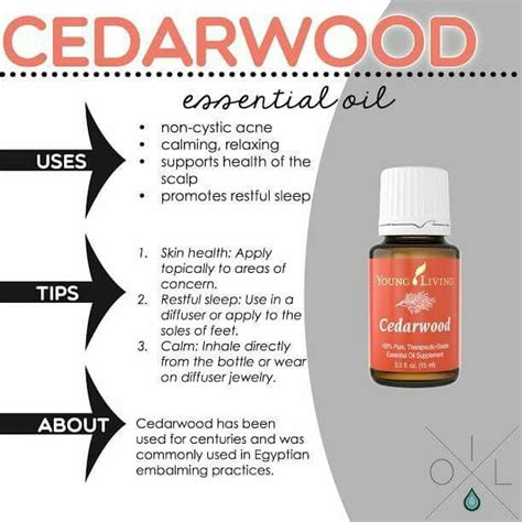 Youngliving Essential Cedarwood 15ml 17 best images about living oils on knee essential blends and hair loss