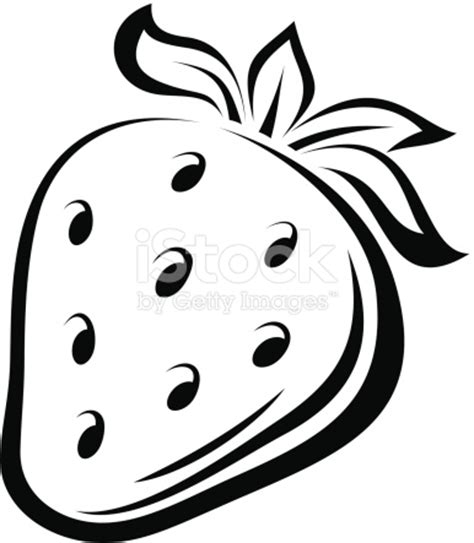 Strawberry Outline Drawing by Contour Drawing Of Strawberry Vector Illustration Stock Vector 477323181 Istock