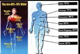 Buku Teknologi Dan Kesehatan Tubuh Kita air dan kesehatan tubuh manusia kabari news