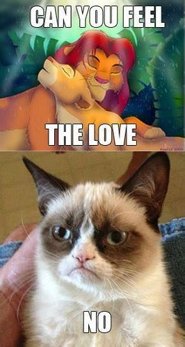 Grumpy Cat Yes Meme